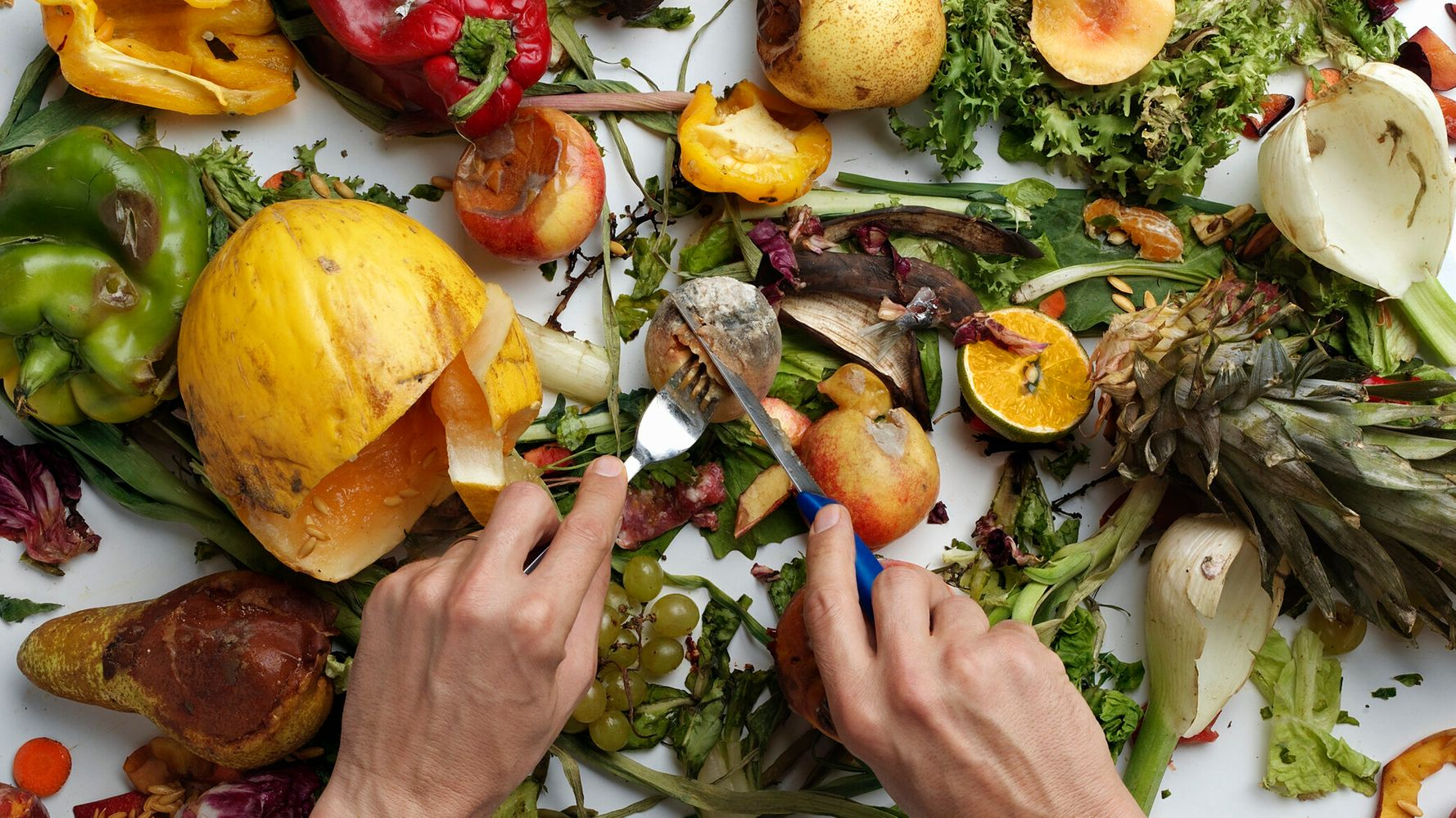 OzHarvest, United Nations urge Aussies to change food waste habits and #PledgeAPlate to save $8 billion per year